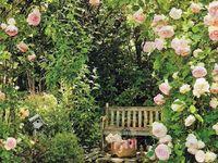 Olivia's Secret Garden