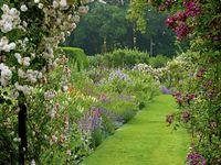 É preciso embelezar sempre o jardim!