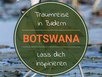 Botswana - Safari, Lodges, Tipps