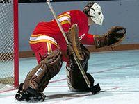 hockey goaltenders