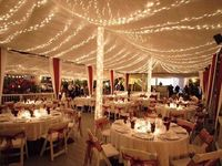 16 Best Images About Wedding Venues In Central Florida On Pinterest