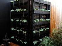 Gardening  Board
