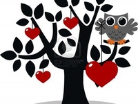 Owl <3 you forever!