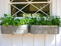 garden, patio, landscaping, etc.