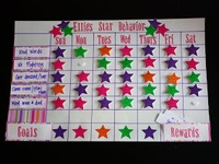 Behavior/Star Chart
