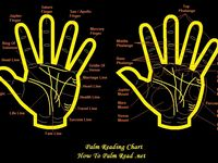 Palm lines & indication guide as one stop reference.