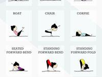 Fitness / Ugh!!!