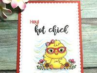Pájaros y pollos graciosos