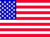 anerican flag bikini