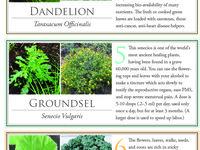 lawns, grasses &weeds