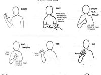 Makaton signing on Pinterest | Sign Language Words, Sign Language and ...