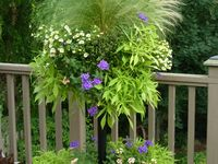 GARDENING - Pots/Planters/Containers