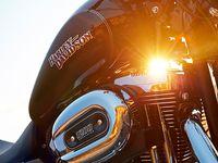 All things Harley Davidson