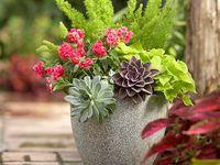 garden and outdoor decor