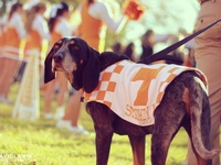 Vol For Life <3