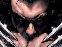Wolverine (x-men, marvel, comics, mutant, logan)