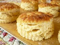 My Italian mother didn't make biscuits except from the refridgerator section of the grocery store. I have been on the hunt for the perfect biscuit recipe to my personal taste and the texture I know I love in a biscuit. I will make my way through these recipes, and hopefully one of them will be THE one........