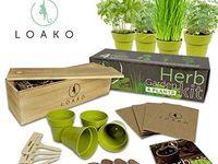 10 Herb Garden Kit Ideas In 2020 Herb Garden Kit Garden Kits Plant Gifts