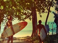 Skate board and Surf Culture