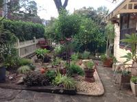 Jen's garden / This is my garden!