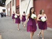 Bridesmaids dresses -  bridesmaids bouquets - bridesmaid luncheon - bridal party - flower girls - gifts - groomsmen - photography - ring bearer - group shots