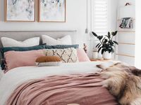 Living Room İdeas