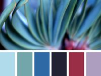 Color swatch inspiration