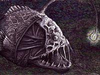 Die 10+ besten Bilder zu Anglerfisch | anglerfisch, fische