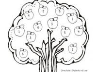 Learning - Themes - Apples