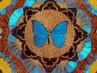 """One of the very first pieces of """"art"""" that I noticed and loved as a child was a tray featuring stunning butterfly wings. My Mom had this precious piece carefully stored in a closet, but would take it out now and then so I could see it. I still think about it often."""