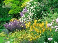 gardening delights