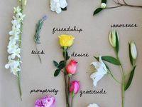 that florist.