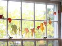 Everything Autumn...