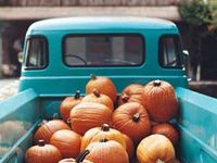 Fav time of year...Fall!!