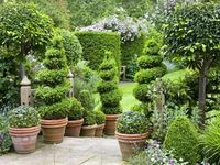 ~ Art of Topiary ~