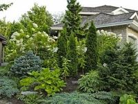landscaping ideas zone
