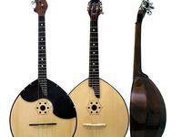 Todos los instrumentos de cuerda que me fascinan (cientos de familias de laúdes, mandolinas, saz, ukeleles, dulcimers, sitares...)... y algún otro.