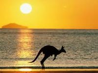 I am a Brazilian guy who loves Australia and dreams to visit this amazing place one day.