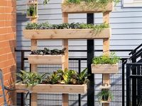 dream home garden