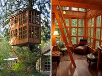Treehouse and playground