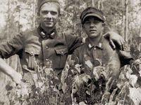 Polskie Siły Zbrojne na terenie okupowanego kraju