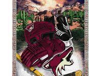 hockey / Icehockey