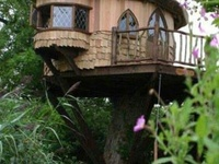 Awesome tree houses