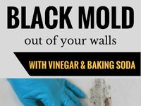 Black Mold / Health problems from black mold, finding hidden black mold, air testing, removal, preventing recurrence.