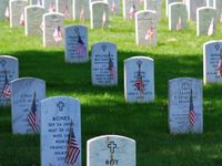 memorial day 2015 northern virginia