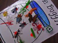 Theme:  Bugs