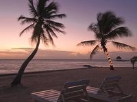 I need a vacation..