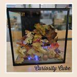 Curiosity Cube  Board