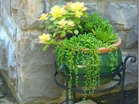 Landscaping/Outdoor decor