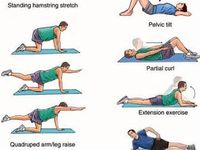 19 Best Images About Back Strengthening Exercises